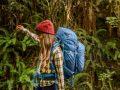 Dicas para uma Viagem na Selva de Modo Seguro