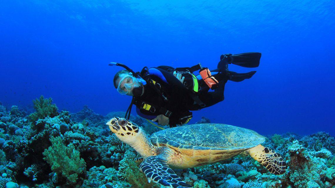 Que tal mergulhar em viagens internacionais?
